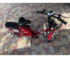Электровелосипед SKYMOTO Junior 350w 36v
